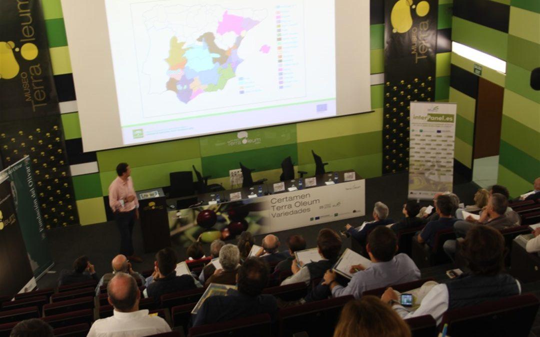 Museo Terra Oleum aborda en un seminario posibilidades de los aceites de oliva producidos con variedades atípicas