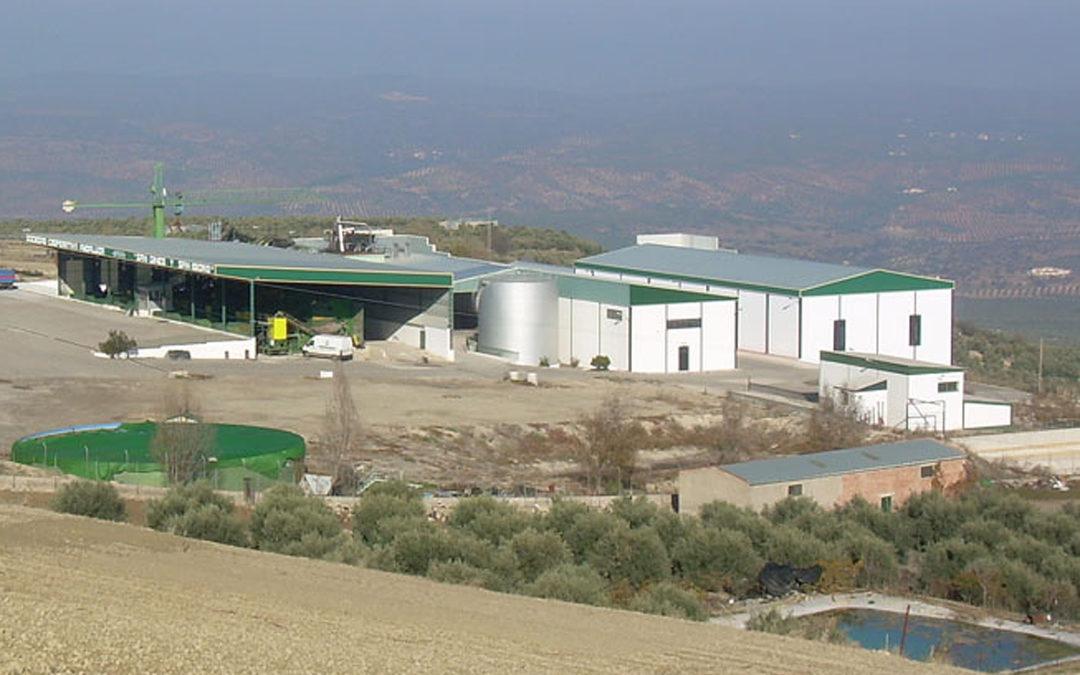 Grupo Interóleo refuerza su peso en el sector oleícola nacional con la incorporación de una nueva cooperativa