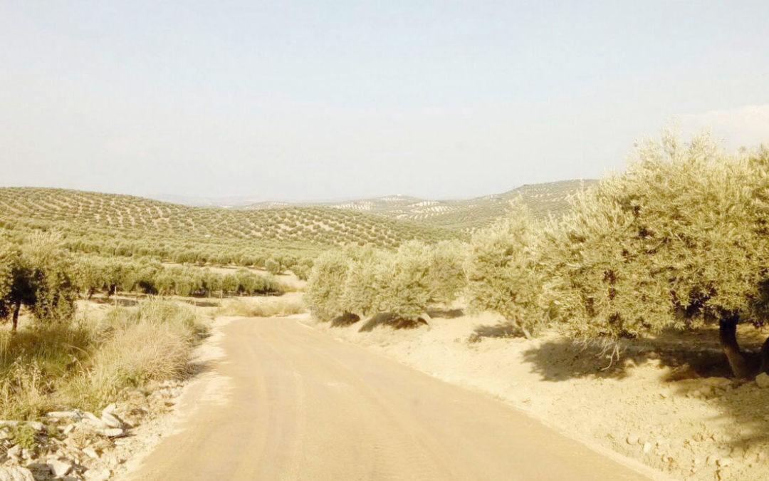 La Junta aprueba una inversión de 154.000 euros para el camino del Algarve