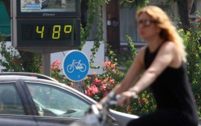 Ola de calor que alcanzará los 40º el fin de semana