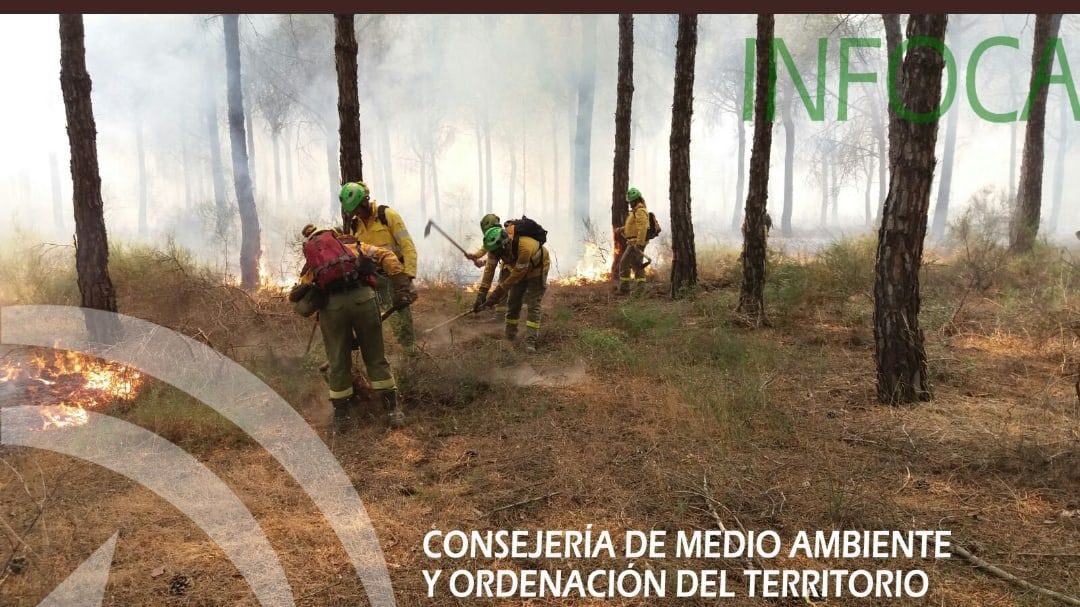Extinguido el incendio forestal declarado de madrugada en la sierra de Marmolejo