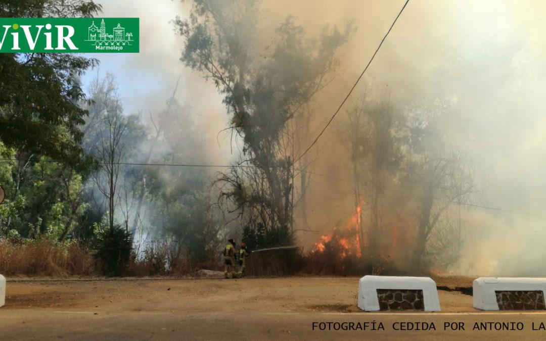 Declarado y controlado un incendio en el Balneario de Marmolejo