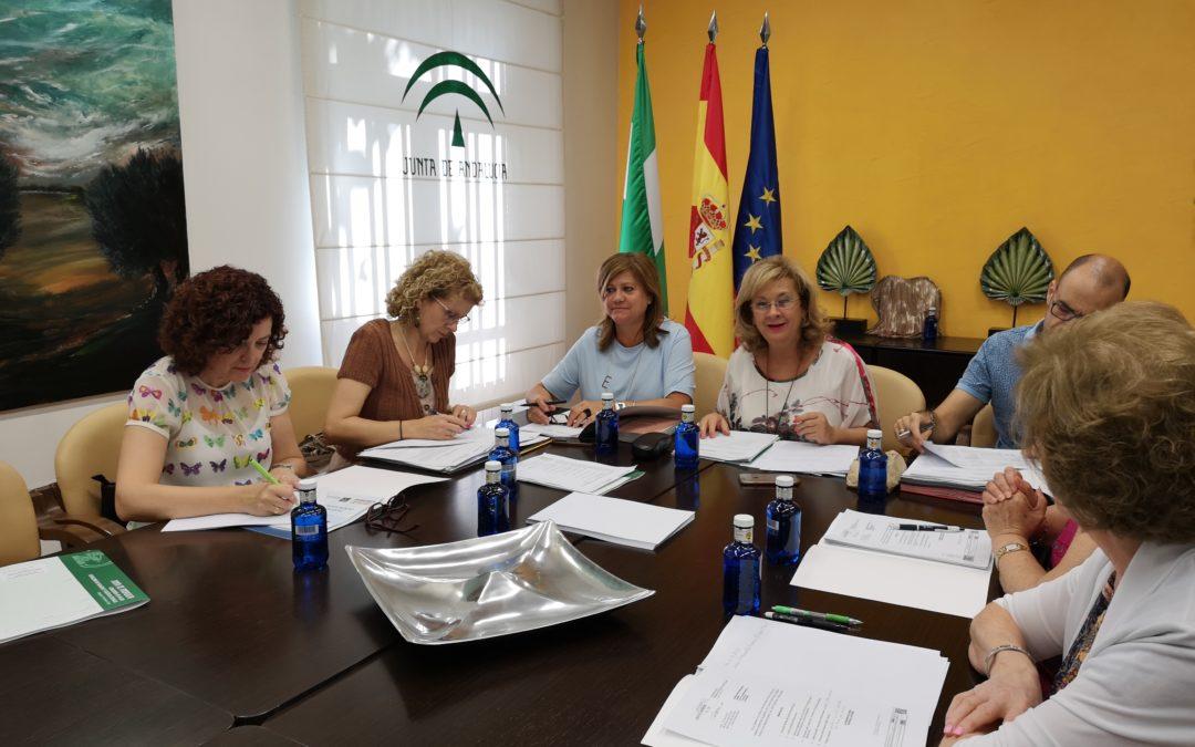 El Consejo Provincial de Mayores se reúne para analizar políticas de envejecimiento activo y de atención a la dependencia