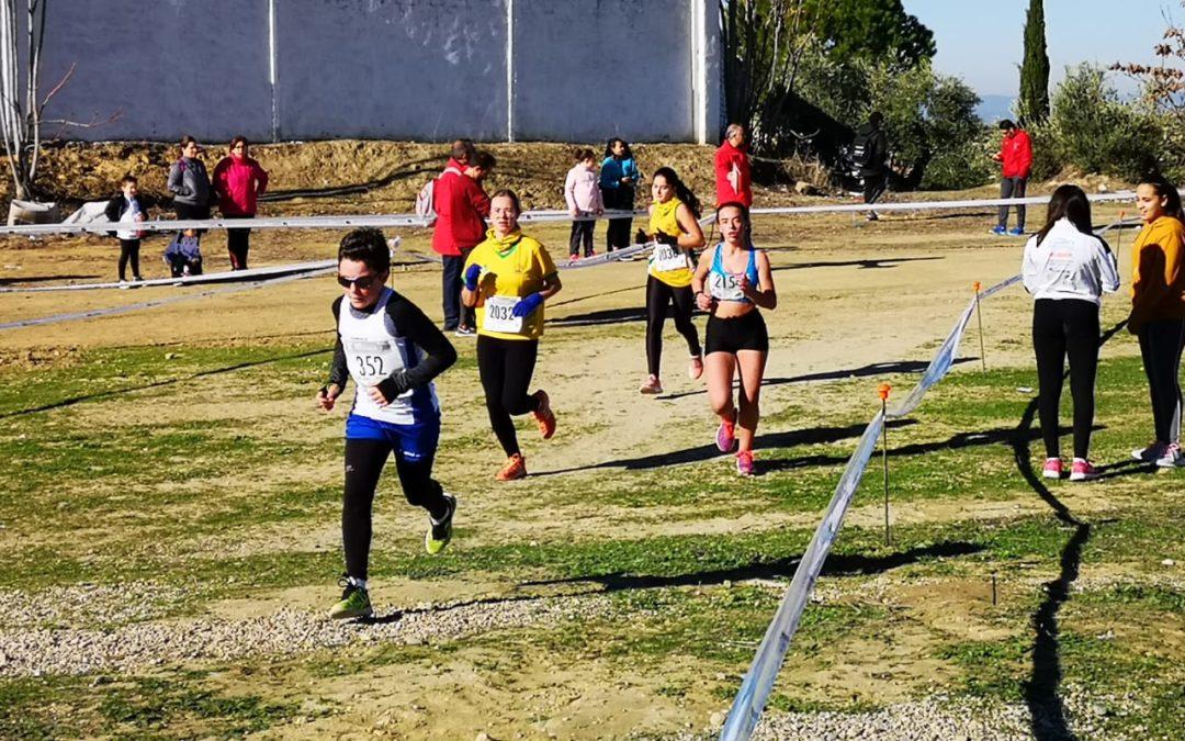 Éxito de organización y afluencia al I campeonato de Campo a través en Arjona