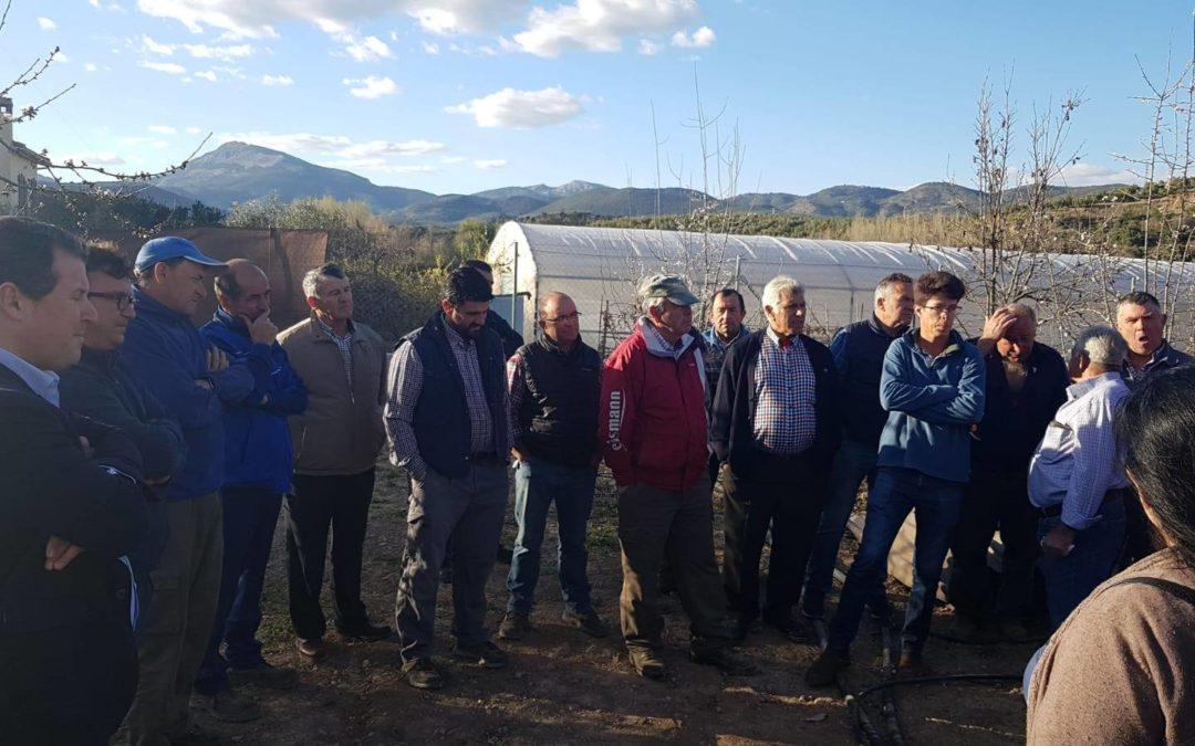 "Veinticinco agricultores participan del curso de ""Poda e injerto del Cerezo"""