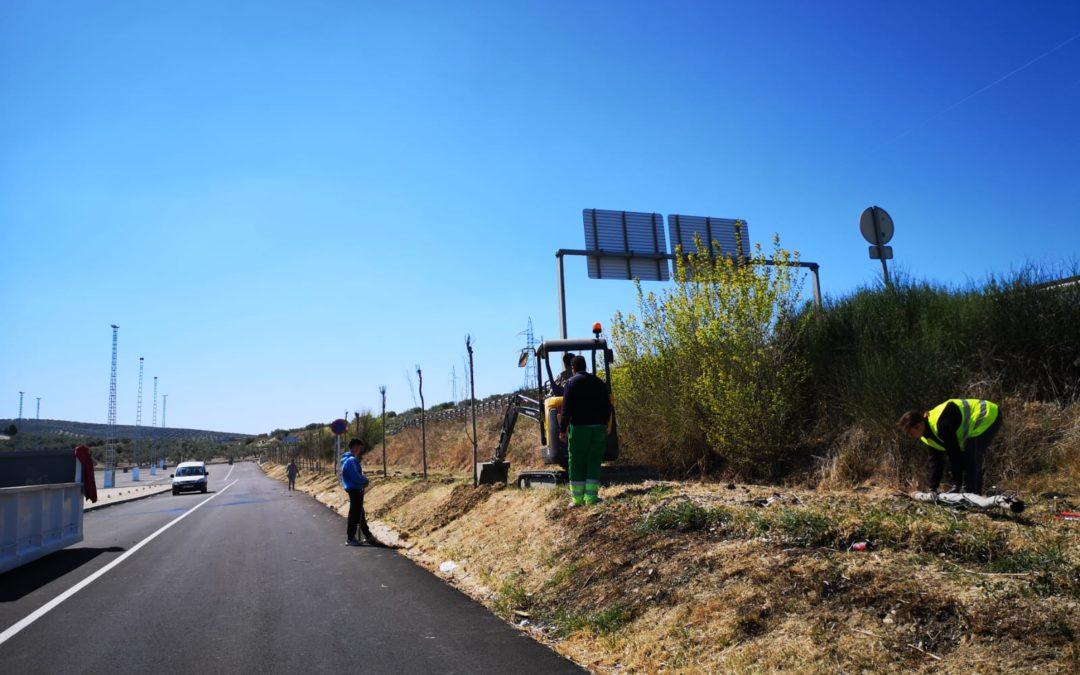 Comienza la plantación de arboleda en el nuevo Recinto Ferial