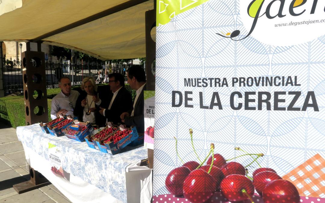 La VII Muestra provincial de la Cereza visitará Arjona