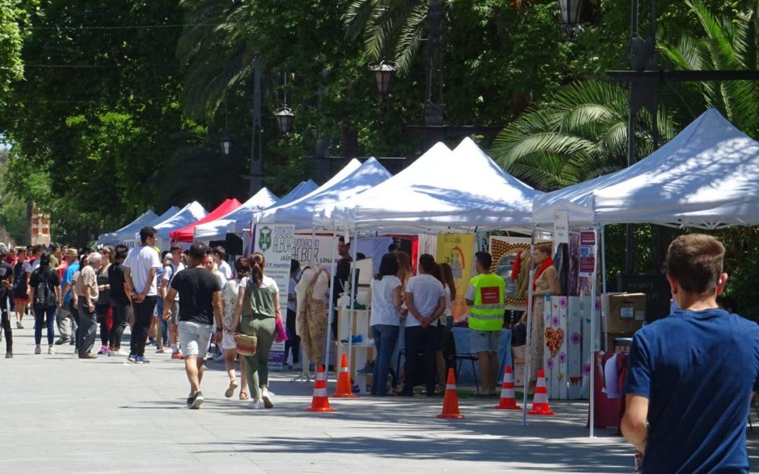 El Paseo de Linarejos acoge la Feria de Formación Profesional
