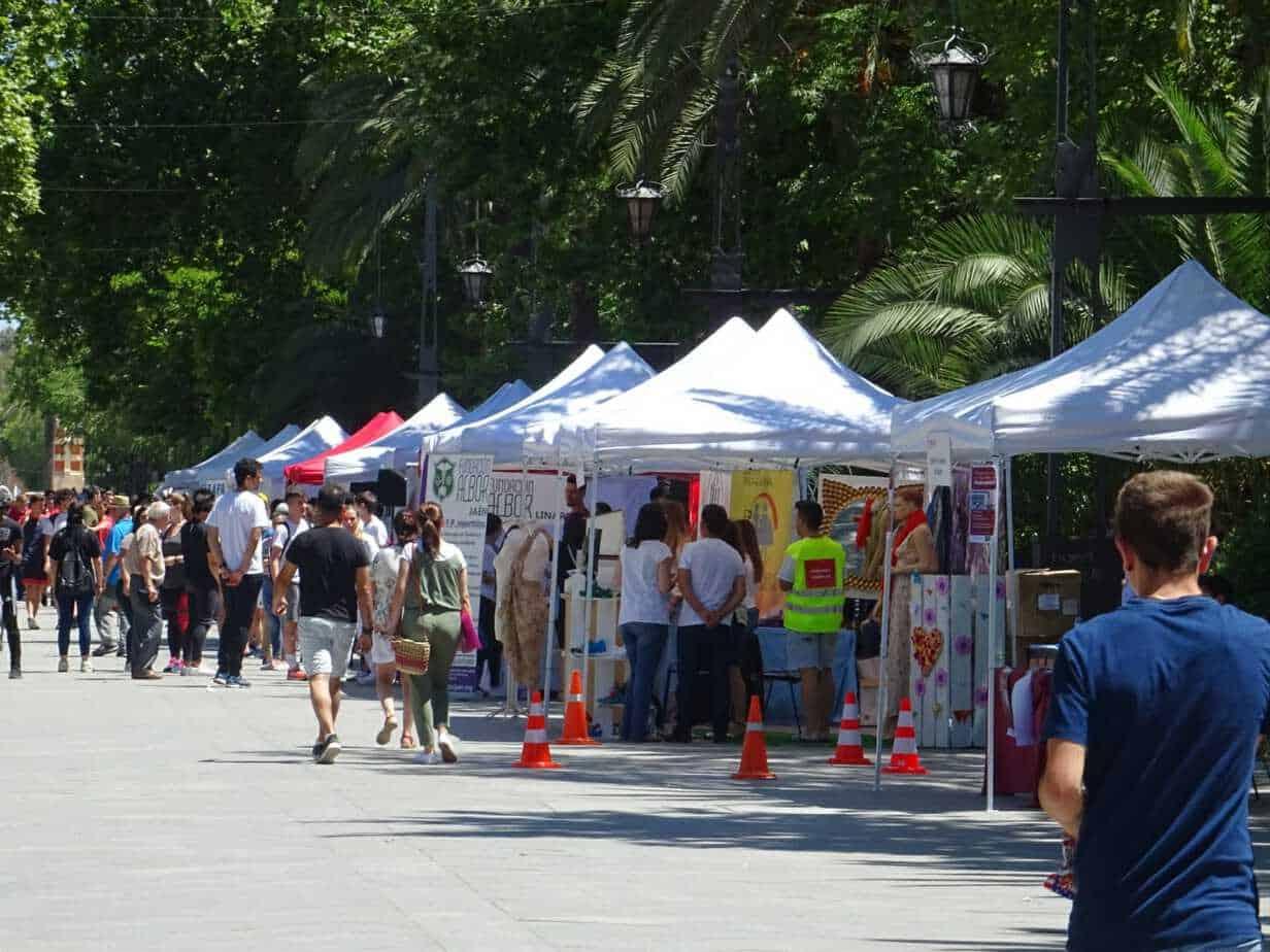 Linares 10 Feria FP