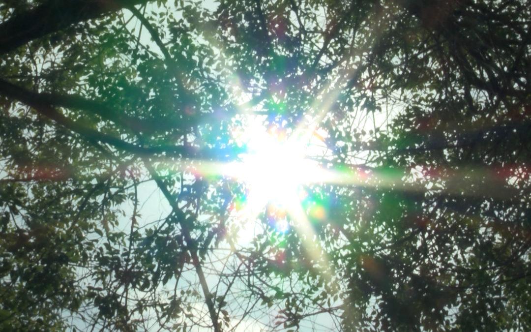Jaén, en nivel rojo del Plan de Prevención de Altas Temperaturas