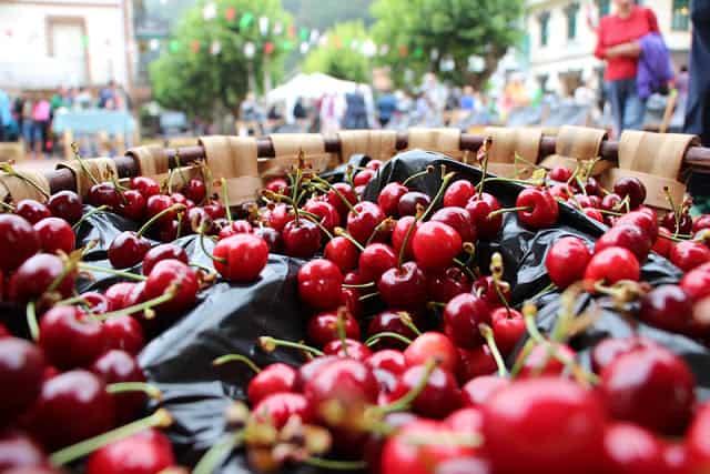 Limitación a la venta ambulante durante la Fiesta de la Cereza