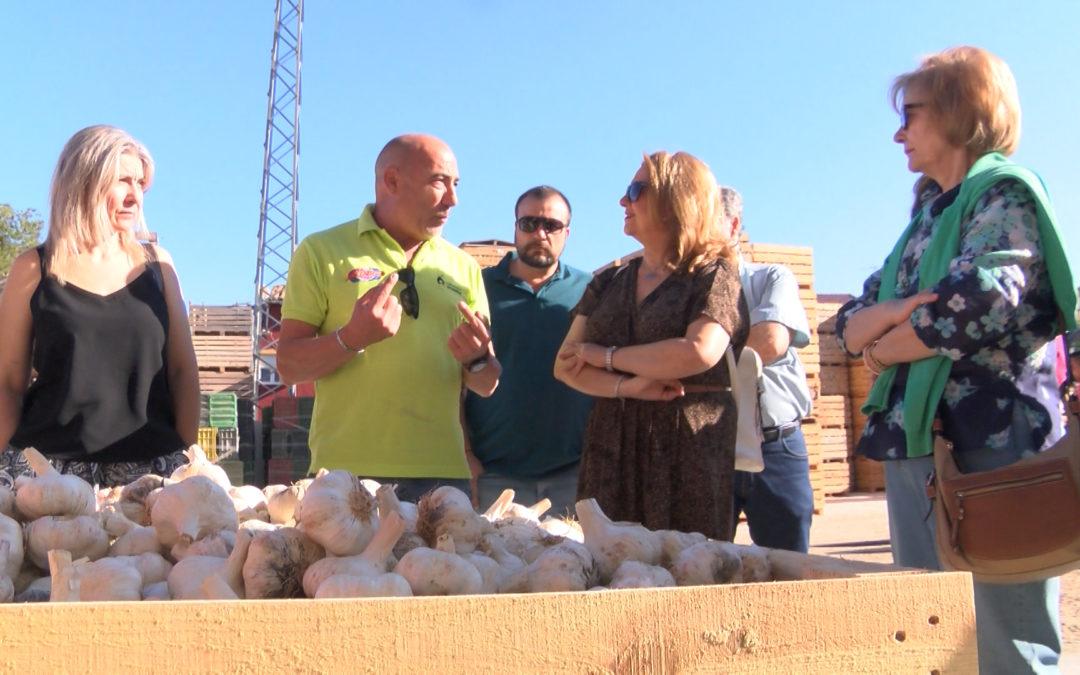 Degusta Jaén visita Ajos Gallardo