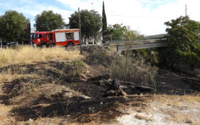 Los bomberos de Martos sofocan un incendio en el puente de la Vía Verde de Torredonjimeno