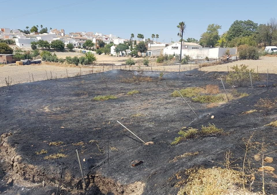 Protección Civil de Lopera sofoca un conato de incendio en la carretera de Cañete-Bujalance