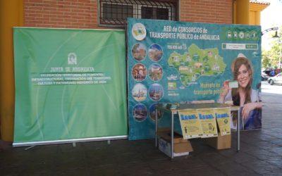 Mañana viernes, todos los viajes realizados con la tarjeta del Consorcio de Jaén serán bonificados