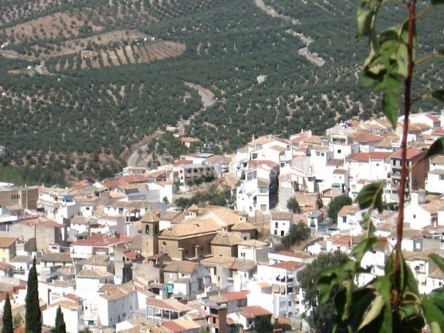 Ayudas de Diputación para proyectos de agricultura y sostenibilidad facilitarán 45 actuaciones en la provincia