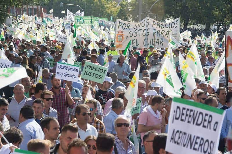 El Ayuntamiento apoya la movilización en defensa del olivar