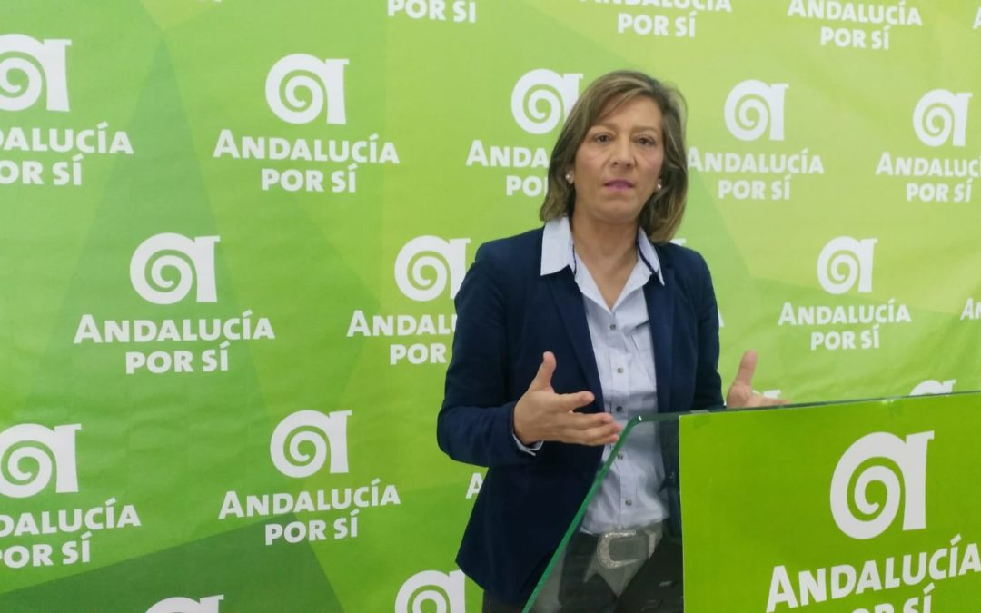 """Camacho se muestra """"indignada"""" por las declaraciones del PSOE sobre el servicio de ayuda a domicilio"""