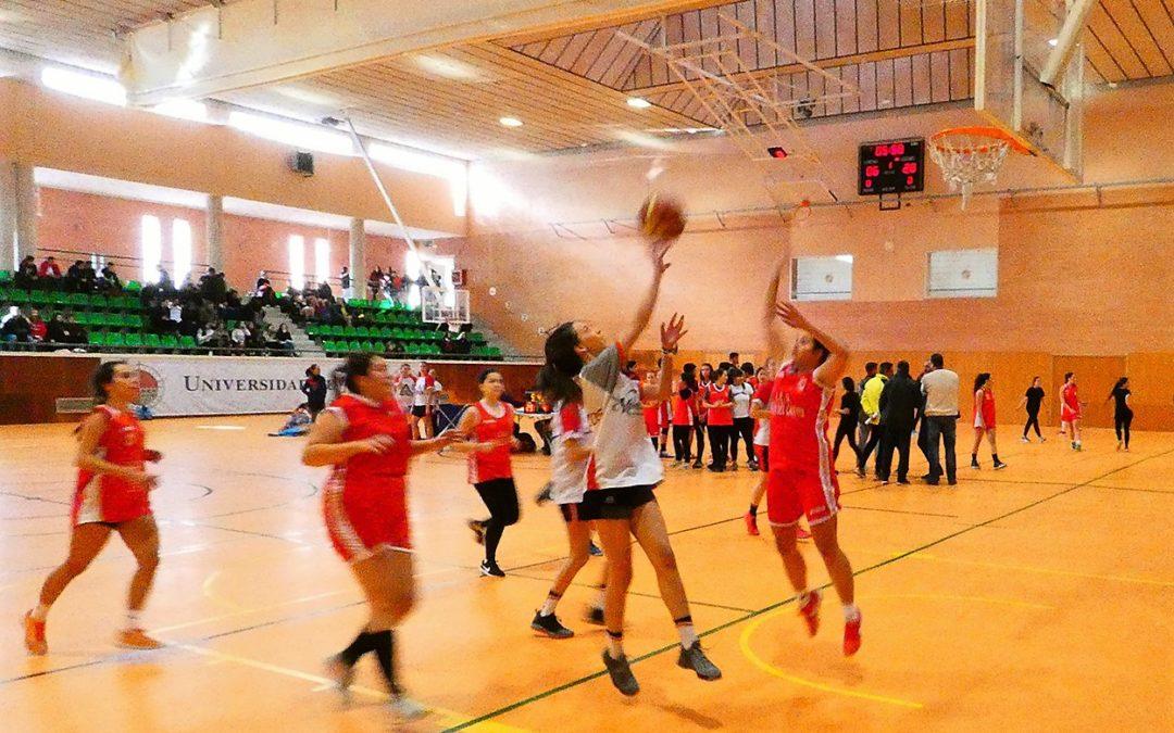 Deportistas del IES Ciudad de Arjona participarán en el Trofeo Acceso de la UJA