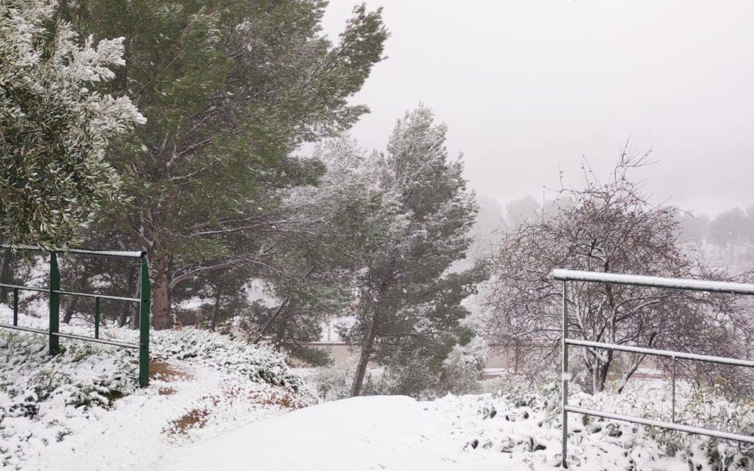 GALERÍA FOTOGRÁFICA | Nieva en Torredelcampo