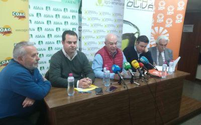 """Las organizaciones agrarias hacen un llamamiento a la participación """"ordenada"""" en las protestas por el olivar"""