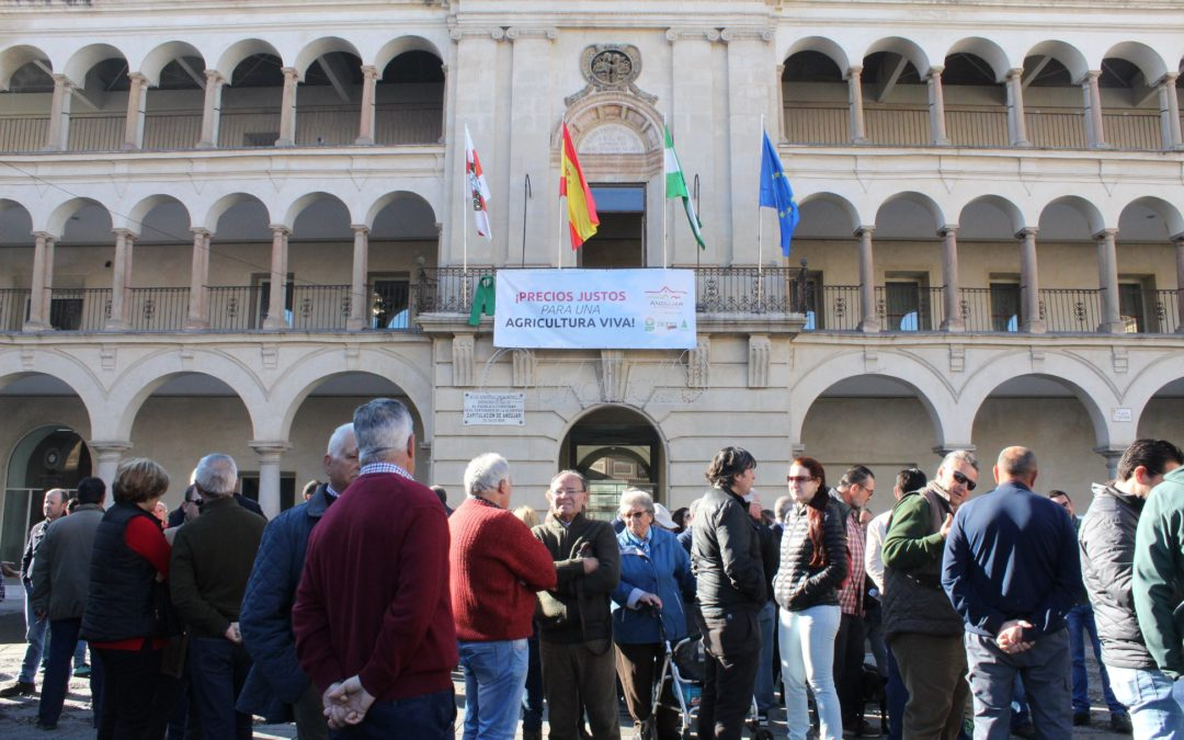 Transcurre sin incidencias la protesta por los bajos precios del aceite de oliva en el centro de Andújar