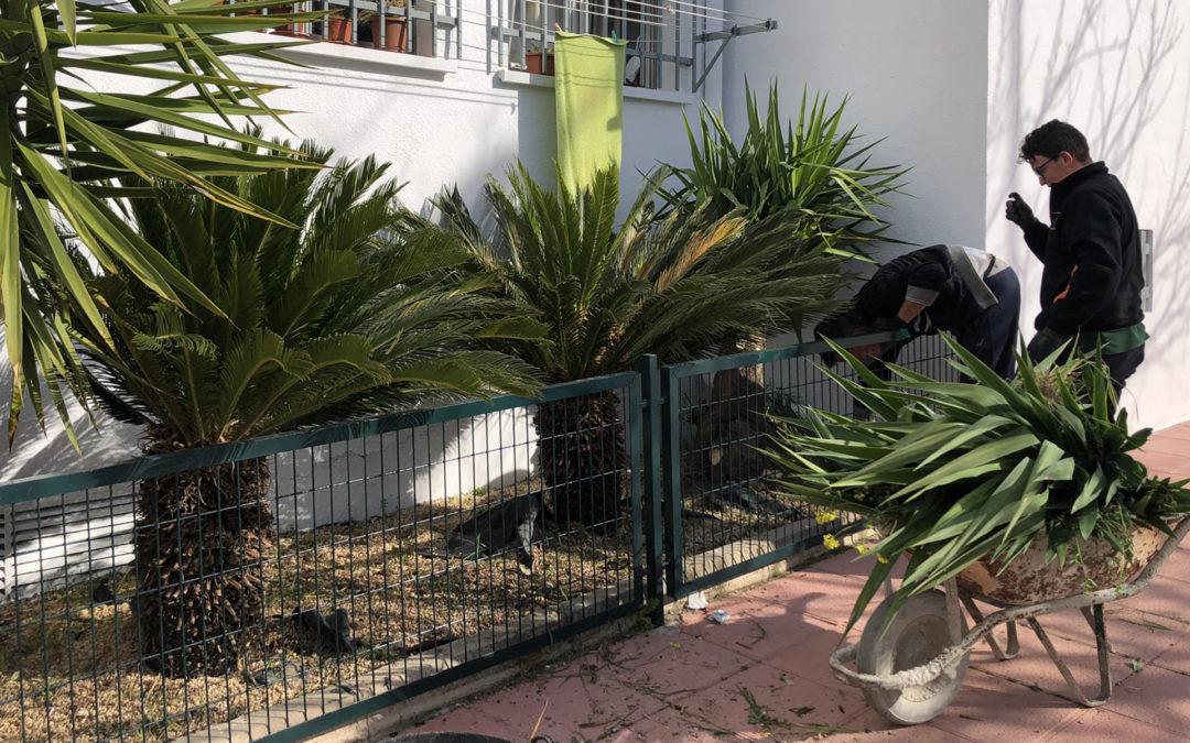 La Plaza de San Rafael se prepara para el Día de Andalucía