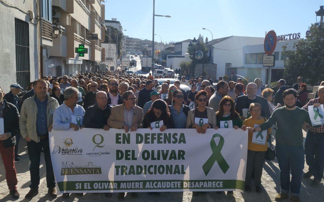Alcaudete, en defensa del olivar y del aceite