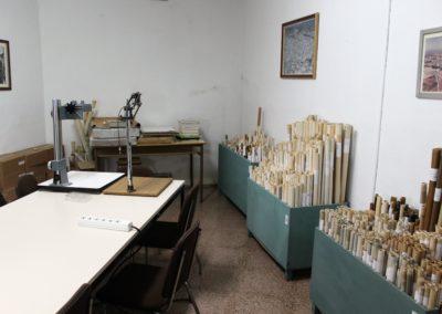 archivo_municipal_linares (10)