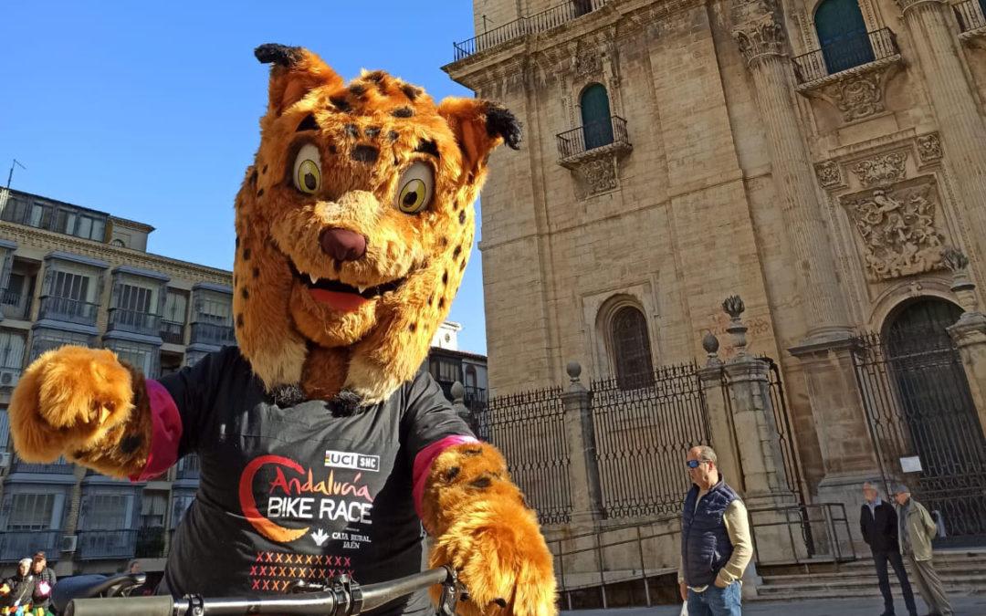 La Andalucía Bike Race y Andújar unidas por la tercera etapa y por el lince
