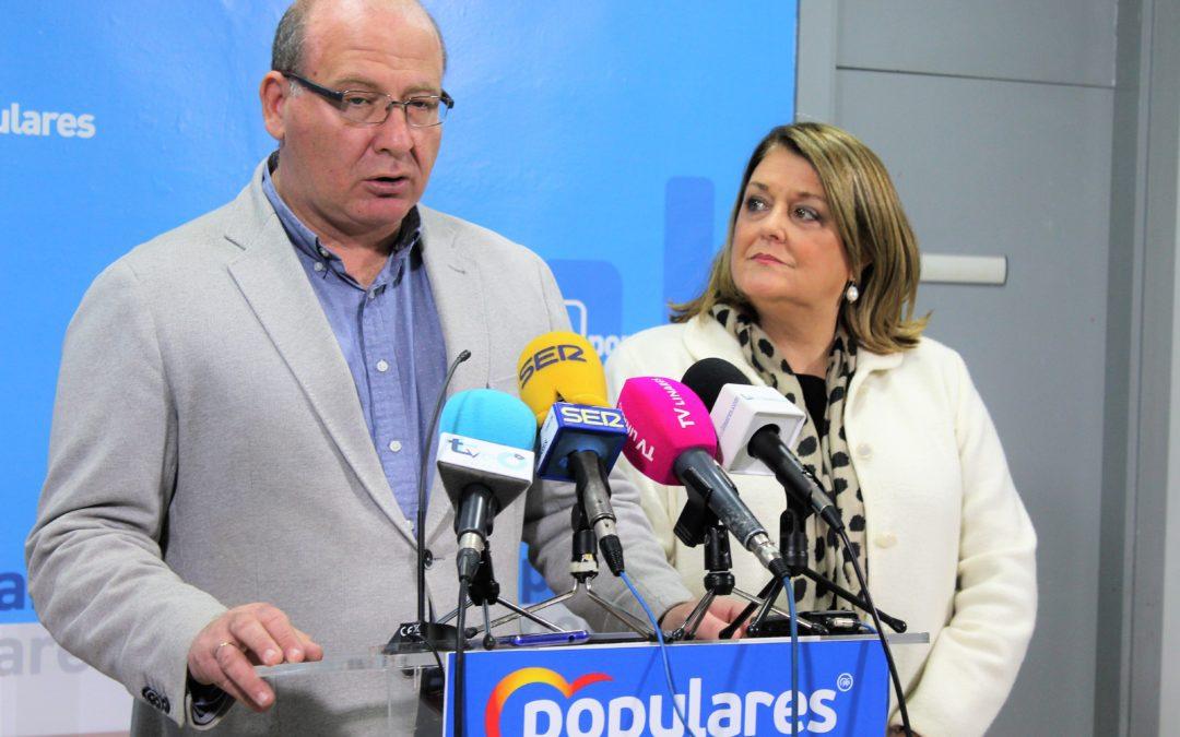 El PP defenderá en el Senado mejores condiciones para el olivar jiennense