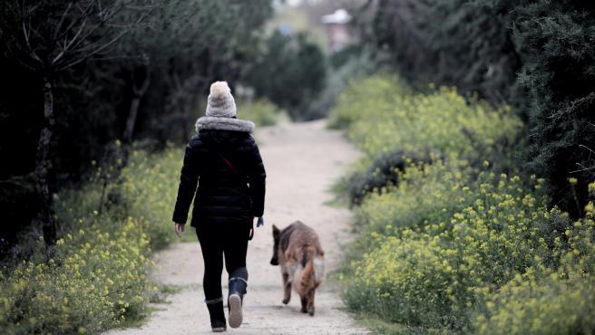 Responsabilidad en el paseo de los perros