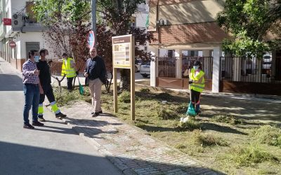 El Ayuntamiento de Torredonjimeno reinicia los Servicios Municipales