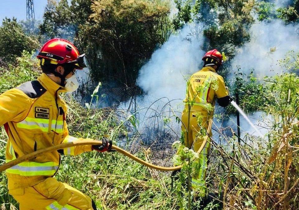 De panales de avispas a conatos de incendios de maleza: el complicado inicio de verano de los Bomberos de Jaén