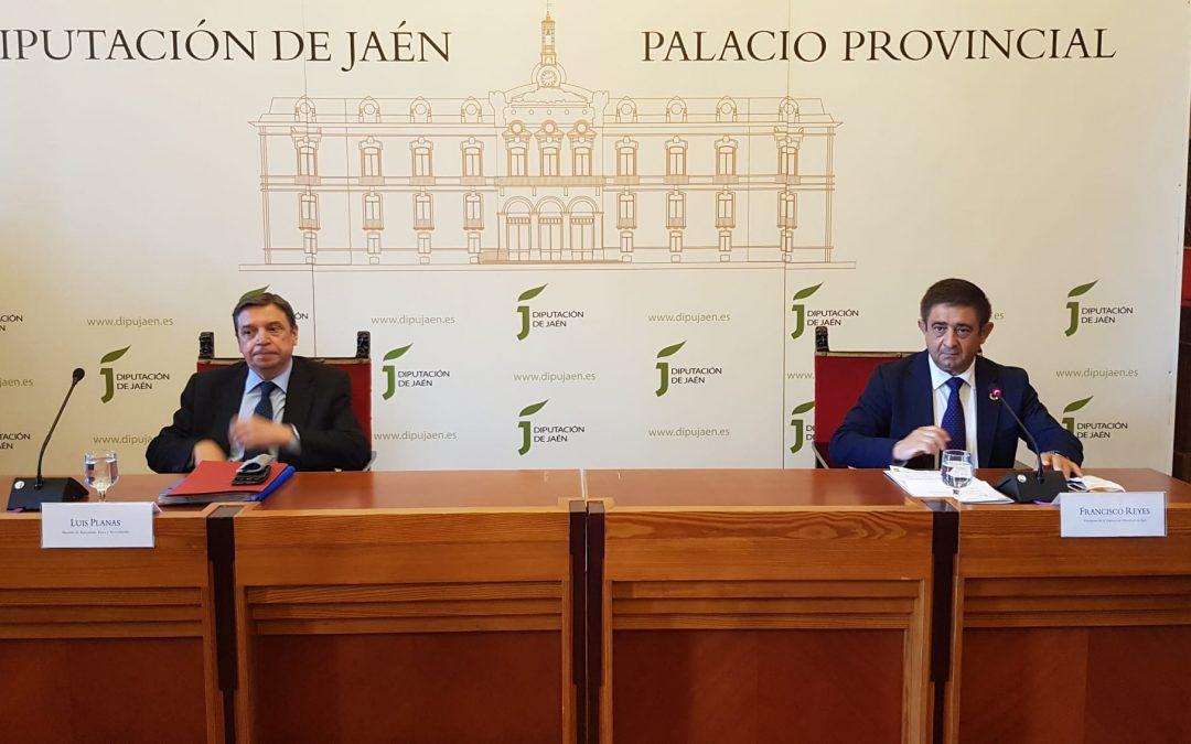 Luis Planas expone en el Consejo Provincial del Aceite de Oliva las medidas para revertir la crisis de precios