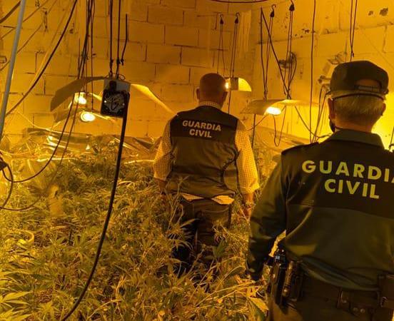 Un loperano investigado por la Guardia Civil cultivaba marihuana en el interior de una cochera