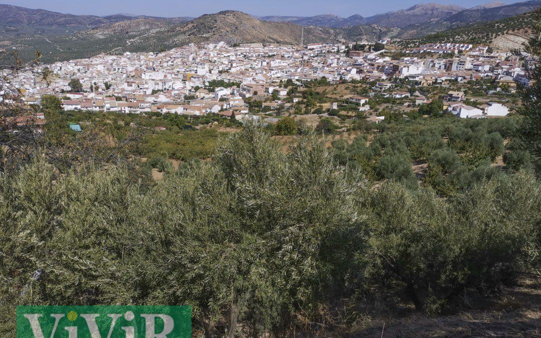 Doce proyectos para la recuperación de Castillo de Locubín