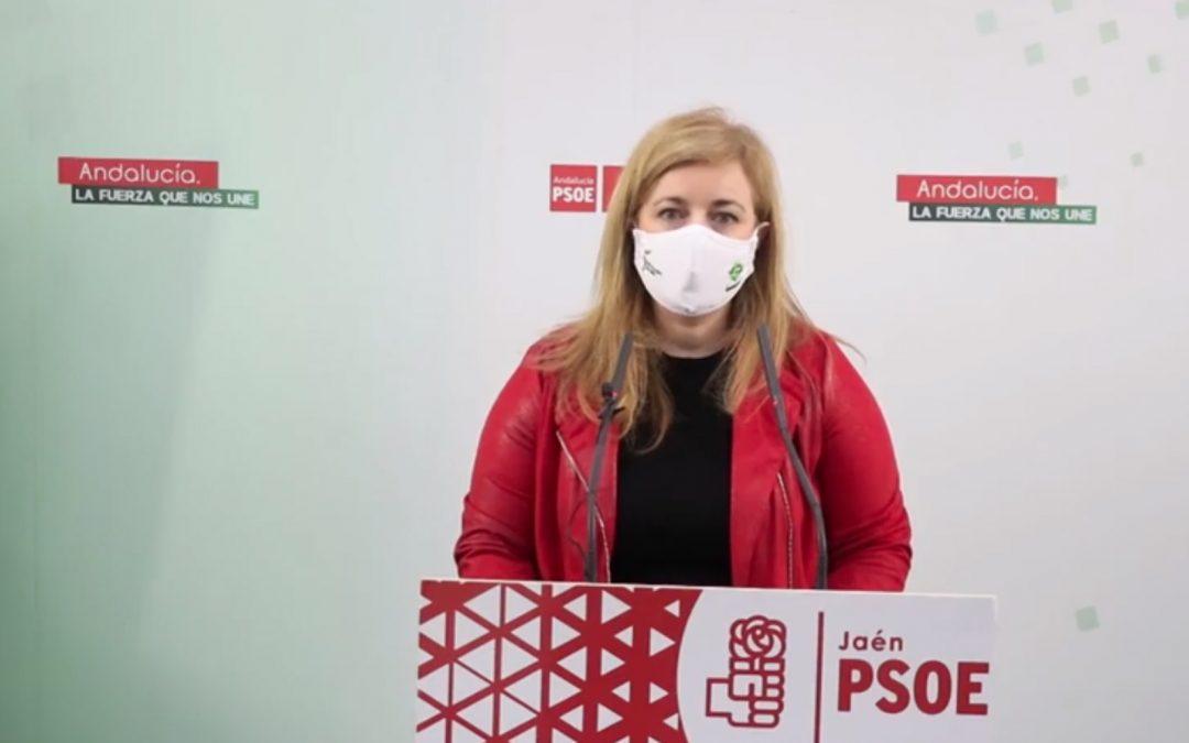 El PSOE denuncia los recortes de la Junta en materia de Juventud