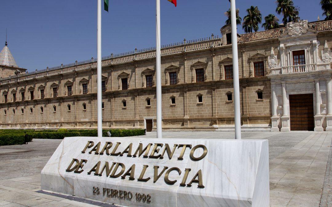 El PSOE lleva al Parlamento Andaluz los apagones eléctricos de la comarca