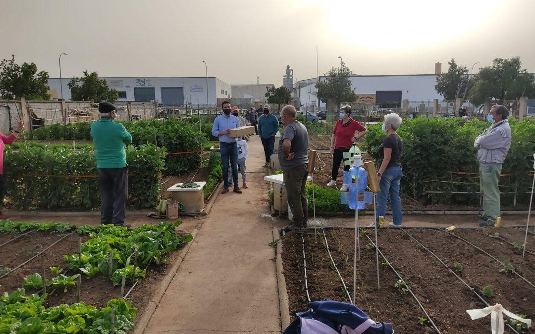 El Ayuntamiento de La Carolina entrega un kit de semillas para los huertos sociales