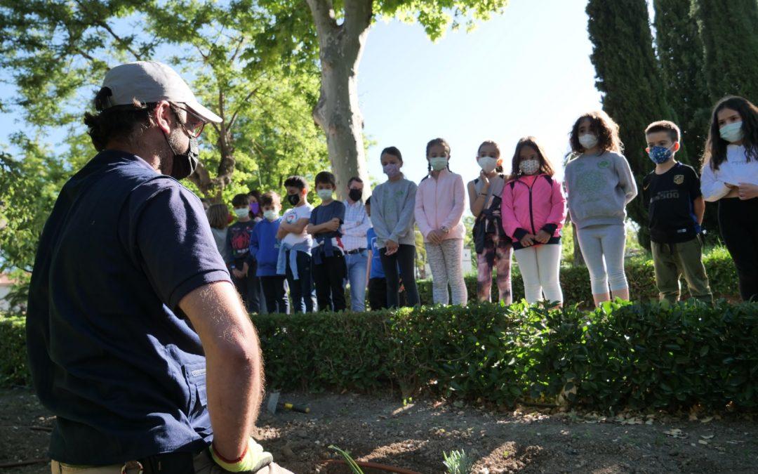 """Niños y niñas de Torredonjimeno participan en el Programa """"Regenera el Parque"""""""