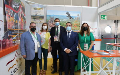 El Ayuntamiento muestra en Expoliva productos relacionados con la olivicultura de empresas de Andújar